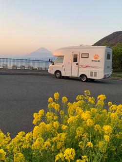 花と富士山とPet-RV