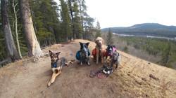 Happy Hike