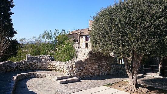 Olivo en patio de piedra, St. Paul de Vence, Francia