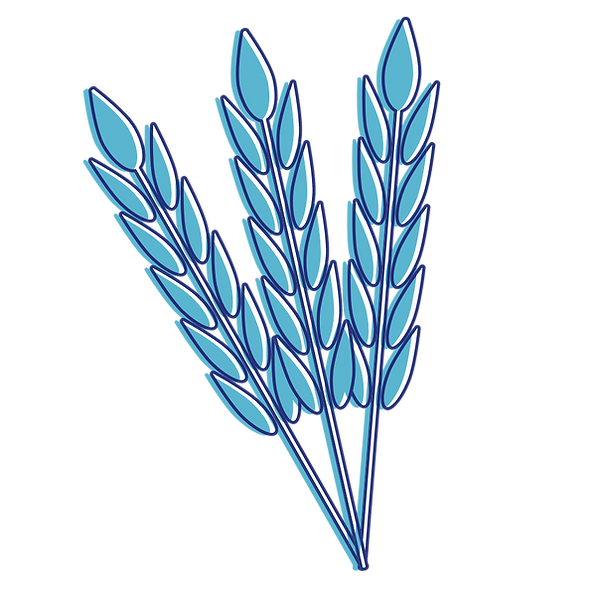 wheat asset (1).png