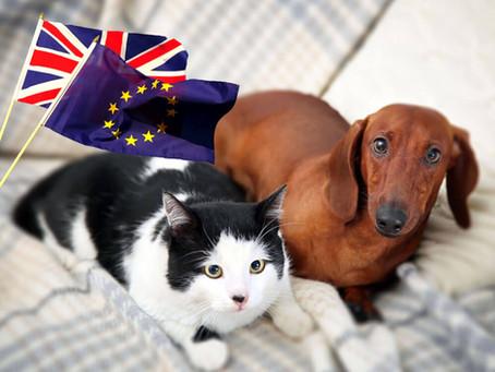 Brexit: wat houdt het in voor mijn huisdier?