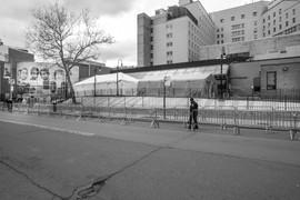COVID-10 Harlem_14a.jpg
