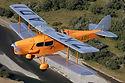 Fox Moth.jpg