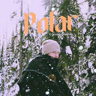 Polar Artwork Album cover.jpg