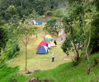 camping_alta_S.jpg