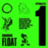 FLOAT 1 new.png