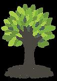 CT Logo 2020-03.png