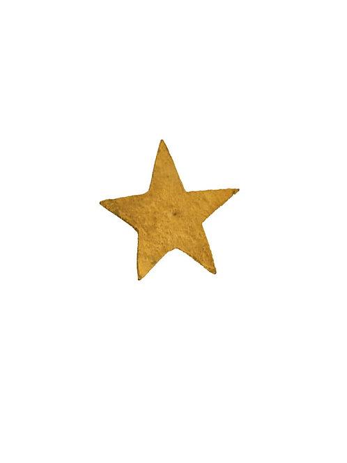 Clou étoile grande taille