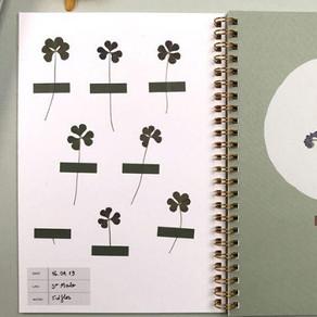 HERBIER - Découvrir les plantes, les immortaliser ...