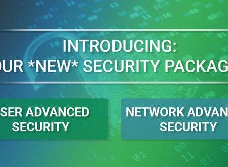 Mapletronics Releases New Security Packages