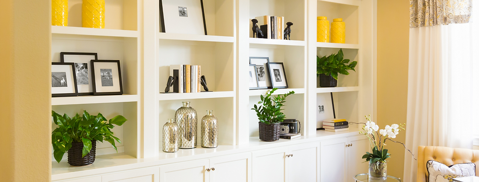 Tidy and Organised Living Room Shelving