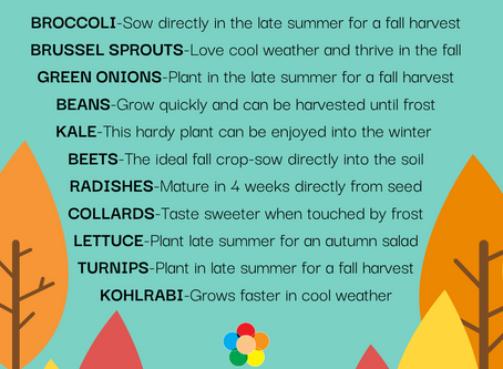 Planting Crops for Fall