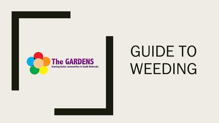 weeding-0 (1).jpg