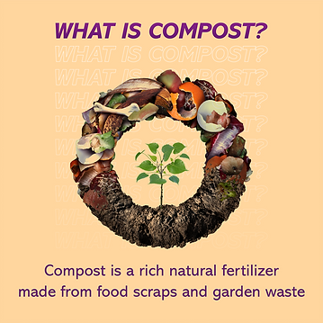 compost2.png