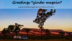 Best Camping in Carnarvon Gorge | Sandstone Park QLD