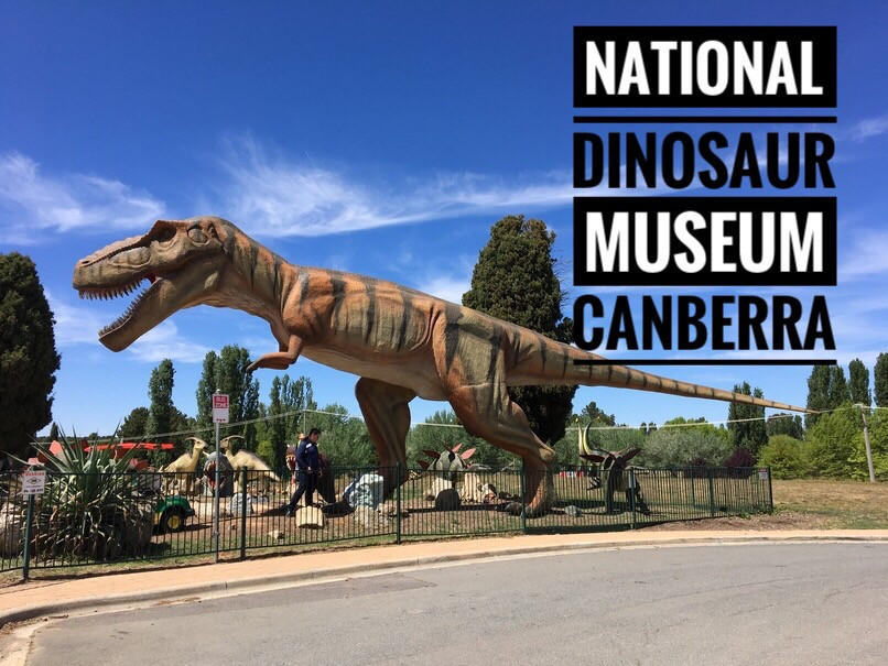 National Dinosaur Museum | Where the giants come to life