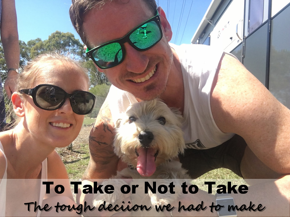 To take or not to take our gorgeous dog around australia
