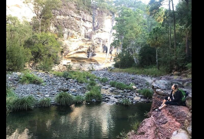 Carnarvon gorge in the evening