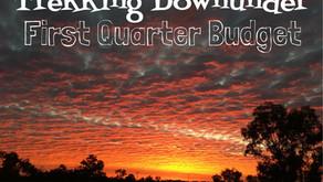 Travelling Fulltime | Quarterly Expense Budget