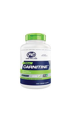 PVL ESSENTIALS - L-CARNITINE
