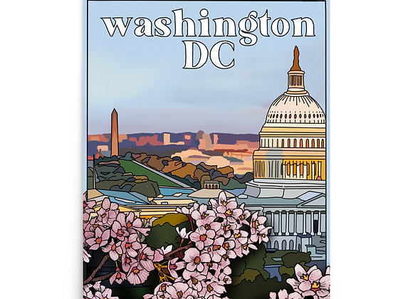 Washington DC Poster