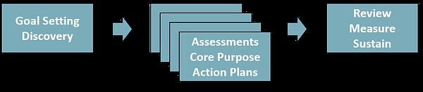 Coaching Process boxes 2.png