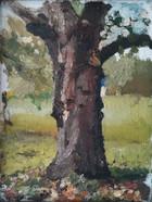 De walnoot in de achtertuin Walnut tree in the backyard  Olieverf op doek Oil on canvas  2017