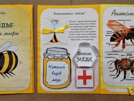 """Лэпбук """"Пчелы:факты и мифы"""""""