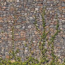 stone_texture_010_gabion_wall_ivy.JPG