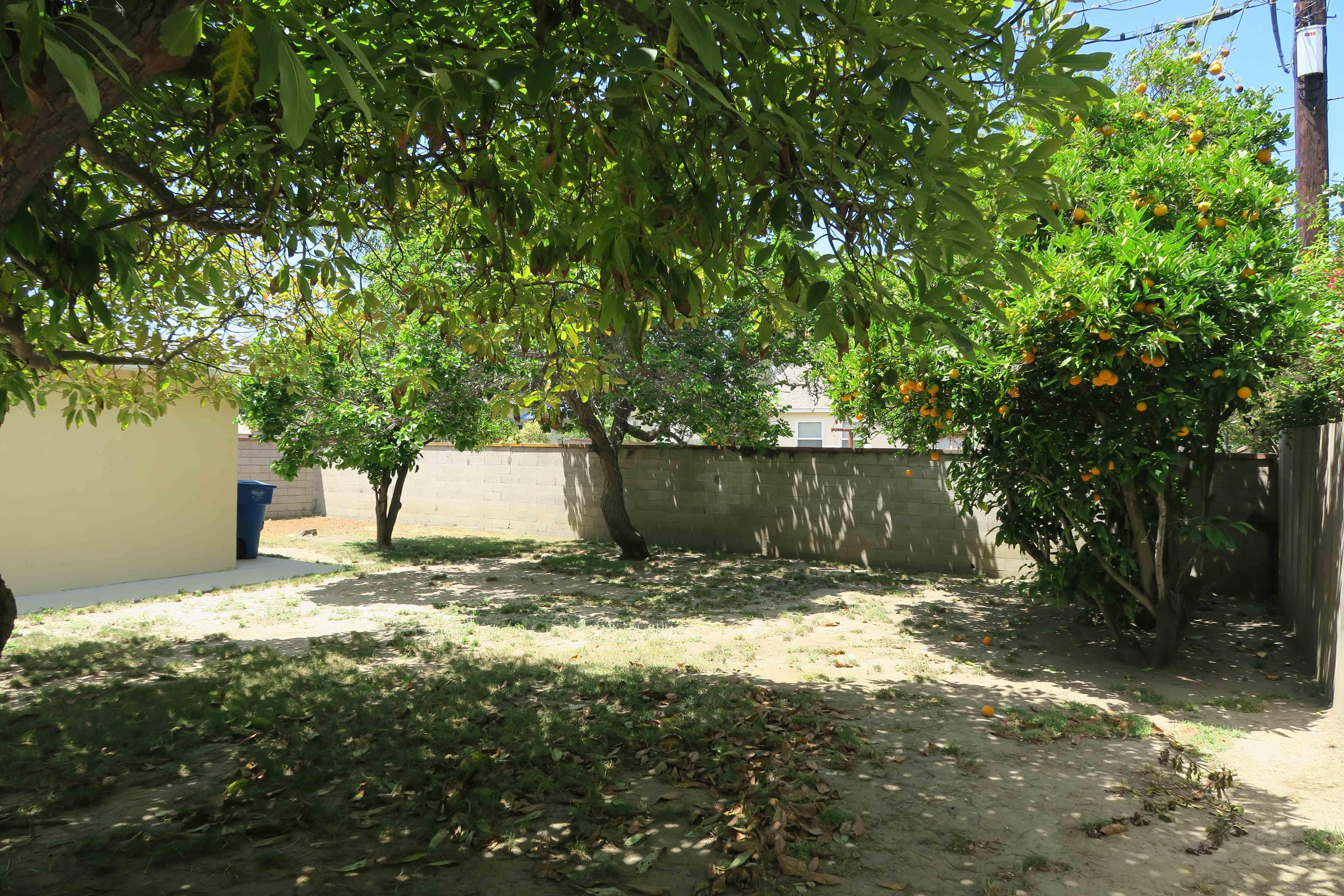 2739 Sereno - Backyard