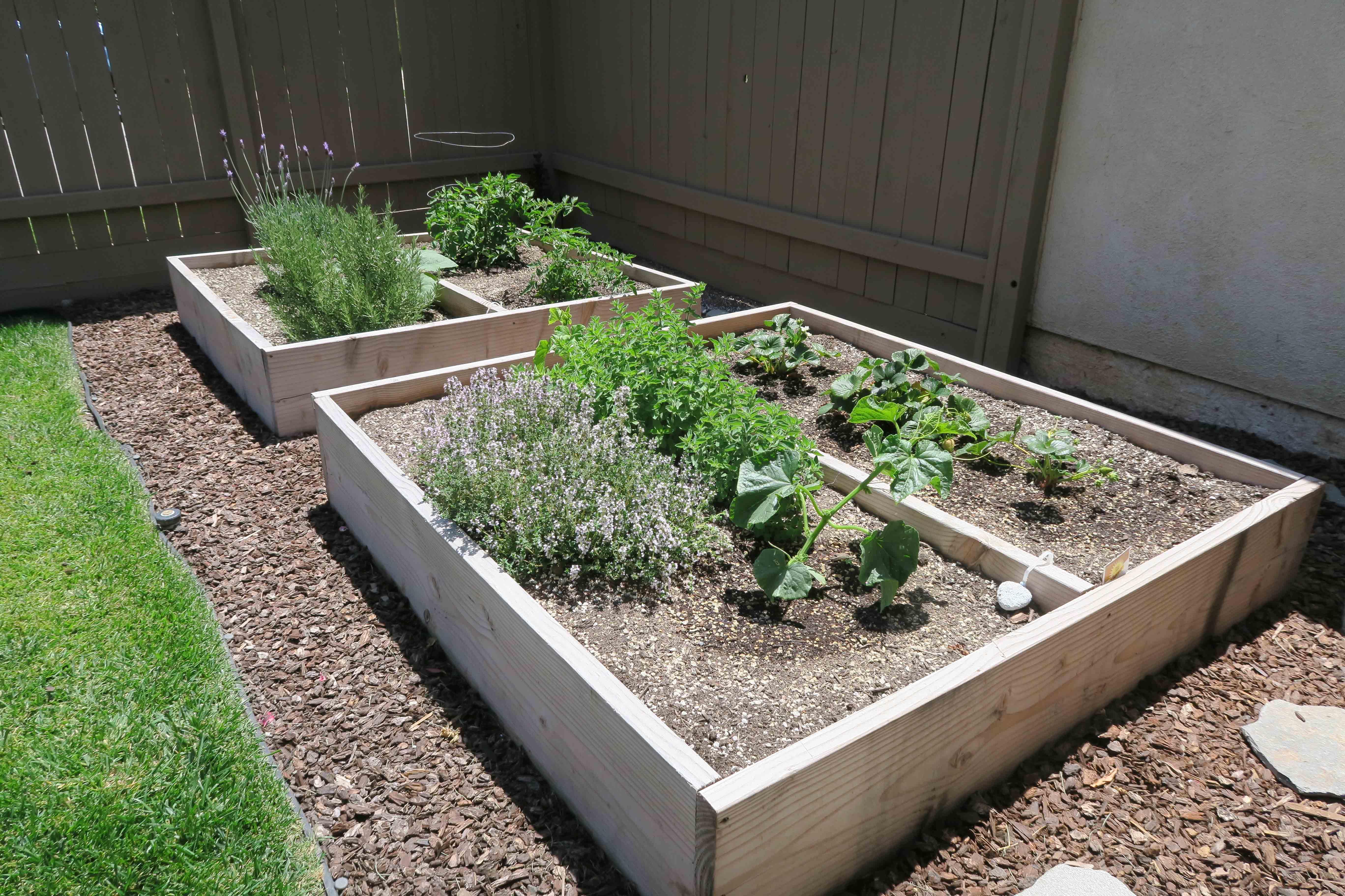1841 Adelaide Ct, Oxnard CA 93035 Garden Beds
