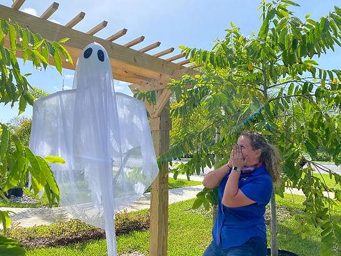 Ghost in the garden.jpg