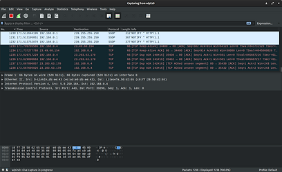 Wireshark_3.0.3_screenshot.png