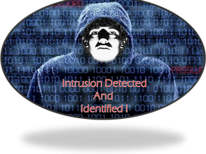 Next-gen intrusion detection: Shine a Light on Malicious Activity!