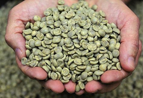 cafe_verde_montañes.jpg