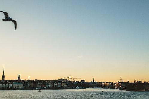 "10"" x 20"" Stockholm Sunset"