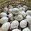 Thumbnail: Porcelain Egg -Dandelion
