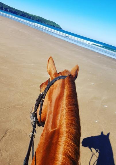 Beauty and the beach.jpg
