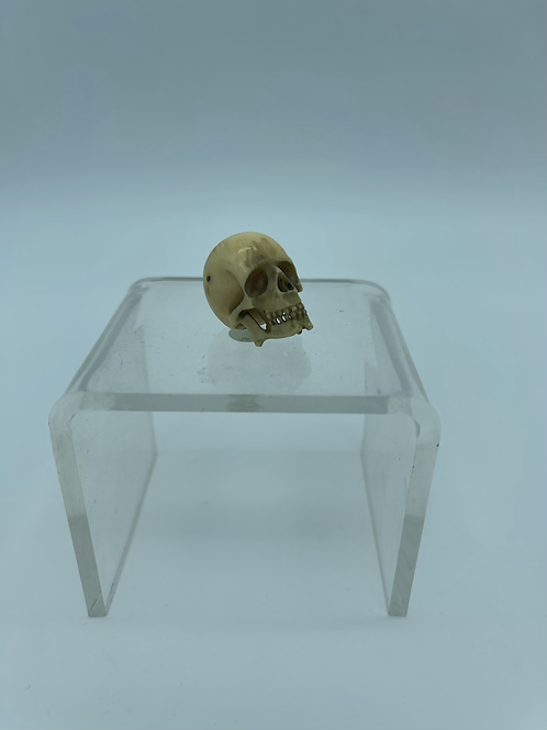 A small memento mori in ivory .