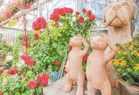VISBEK macht Stoppelmarkt - Blumen Westermann🎡 Seid ihr auch bereit für den Stoppelmarkt?😀   Blumen Westermann wünscht euch viel Spaß und Freude auf den Stoppelmarkt 2019. Für die Leute, die lieber ein ruhiges Wochenende erleben möchten, schaut doch bei Westermann im Laden vorbei. Blumen Westermann hat Montags bis Freitags von 08:00 - 18:30 Uhr und Samstags von 08:00 - 16:00 Uhr für euch geöffnet 😉🤝   #visbek #stoppelmarkt #blumen #westermann