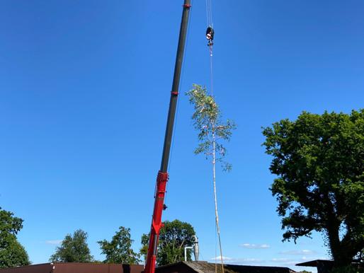 Krandienst Kranverleih Kranvermietung Kranarbeiten Baumfällungen Autokrane und Arbeitsbühnen mieten