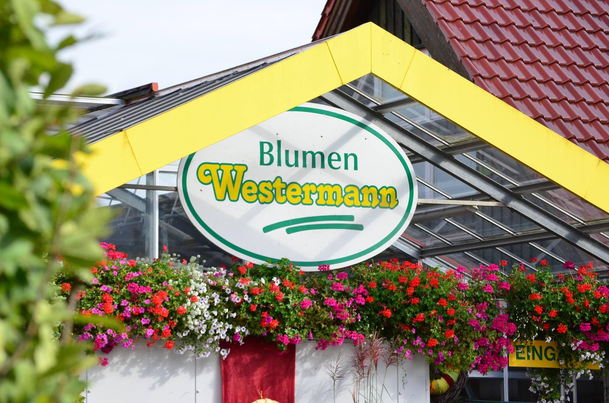 Blumen Westermann