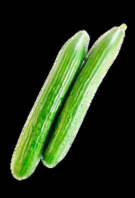 gurken-visbek-niemöller