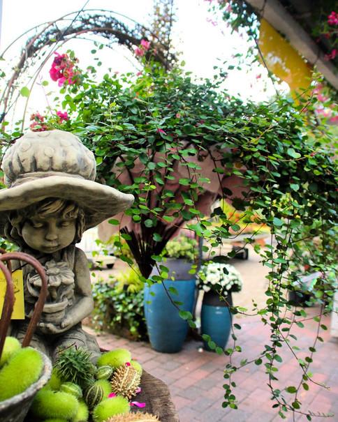 VISBEK machtHerbst Dekorationen - Blumen Westermann🍂🍁🍄