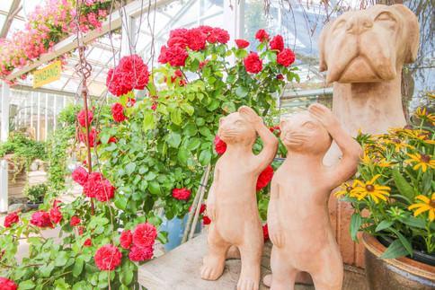 VISBEK macht Stoppelmarkt - Blumen Westermann🎡🥳