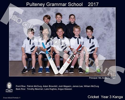 Year 3 Cricket Kanga
