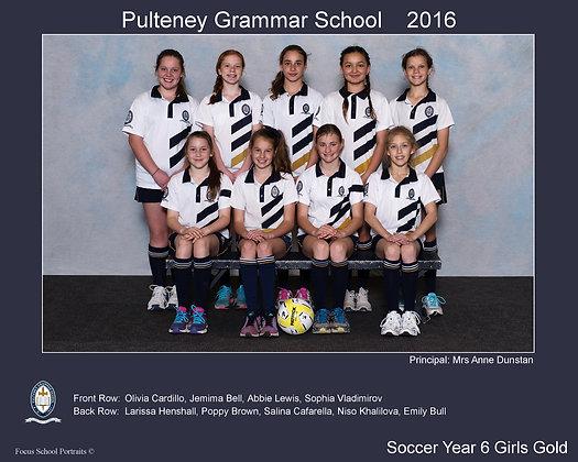 Year 6 Girls Soccer Gold
