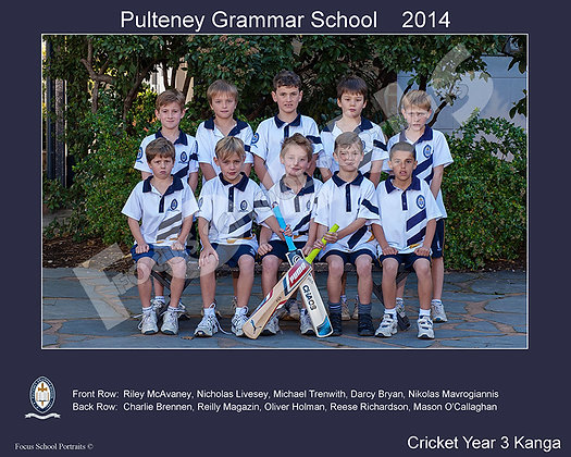 Cricket - Year 3 Kanga
