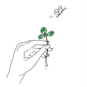 Vos activités plantes