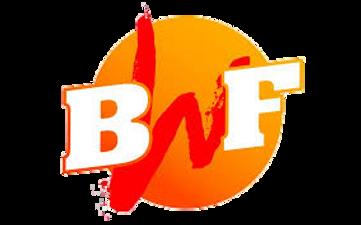 BWF logo.png